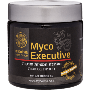 מיקו אקזקיוטיב – למנהל בעידן המודרני